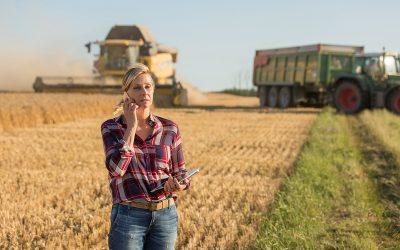Rain Makes Grain — Until it Doesn't