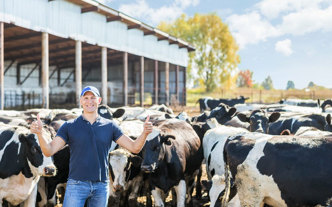 Dairy Structure Management Overhaul Moves Into New Phase