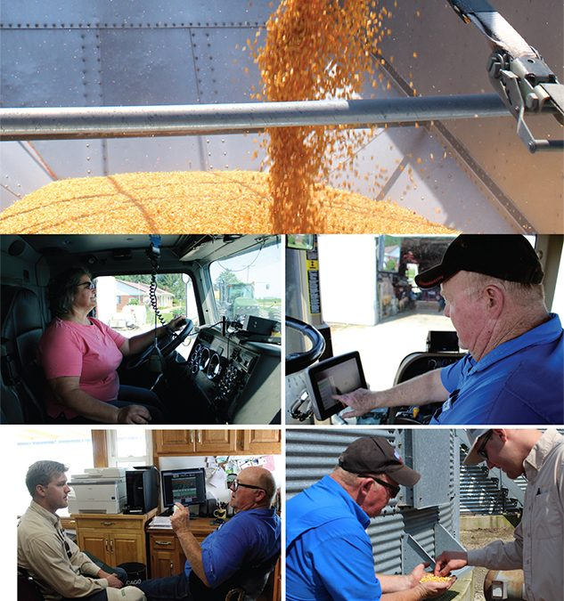 Farm Hard, Market Smart