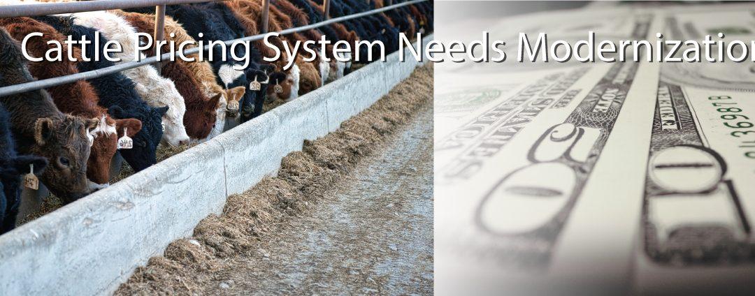 National Farmers Organization Says Cattle Pricing System Needs Modernization