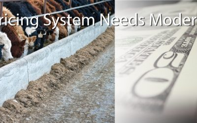 National Farmers Organization Says Cattle Pricing System Needs Modernization