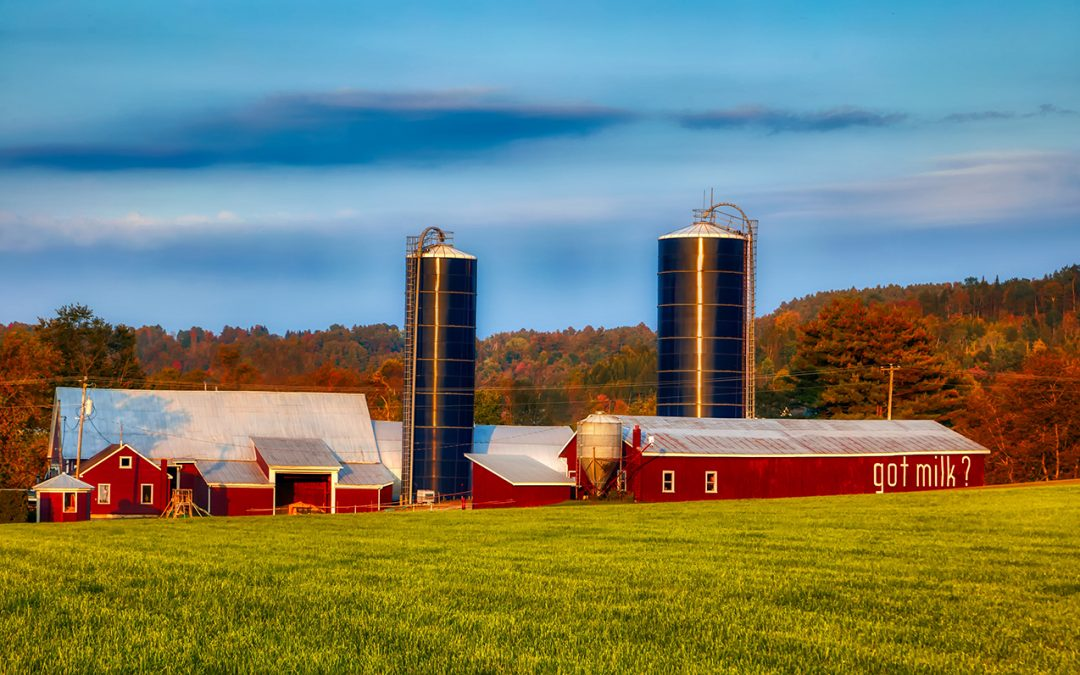 National Farmers Organization Highlights its Dairy Farm Structure Management Plan at Convention 2020 in Bloomington, Minnesota