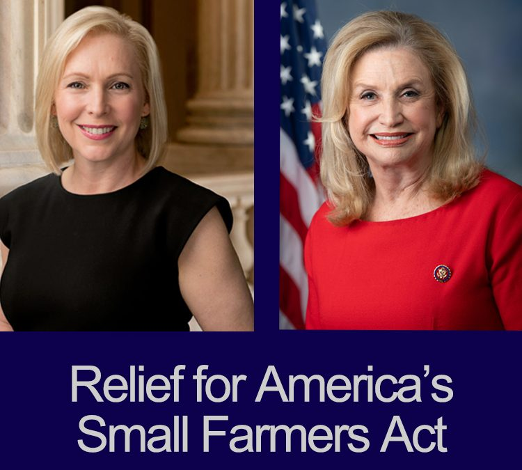 National Farmers Endorses New York Senator Gillibrand's, Congresswoman Maloney's Relief for America's Small Farmers Act